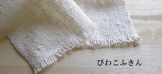 biwako_top